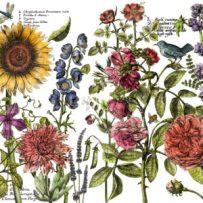 BotanistsJournal
